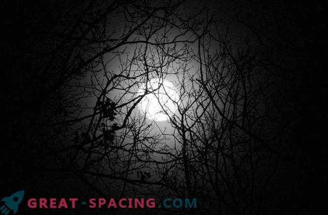 La pleine lune se lève à Noël