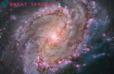 Le télescope Hubble a montré la vie des étoiles dans la galaxie South Spinner.