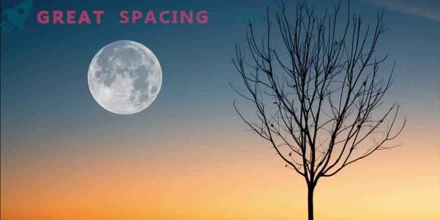 À quoi s'attendre de la pleine lune le 19 avril 2019