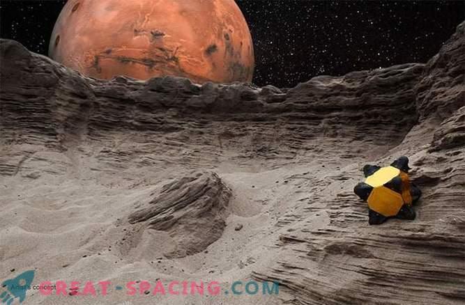 Les hérissons peuvent sauter autour du système solaire